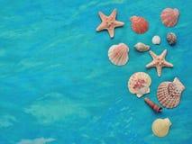Estrellas de mar y conchas marinas en fondo de la turquesa Imagen de archivo