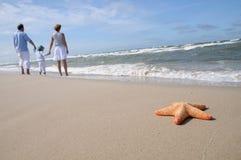 Estrellas de mar y familia tranquila en la playa Foto de archivo