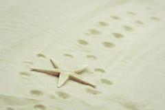 Estrellas de mar y huellas Fotos de archivo