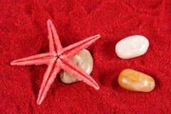 Estrellas de mar y piedras en la arena roja Fotografía de archivo libre de regalías