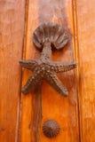 Estrellas de mar y shell formados golpeador Fotos de archivo libres de regalías