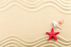 Estrellas de mar y shelles en la playa Imagen de archivo