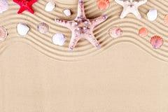 Estrellas de mar y shelles en la playa Vacaciones de verano imagen de archivo