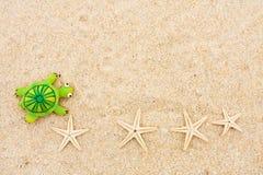 Estrellas de mar y tortuga Foto de archivo libre de regalías