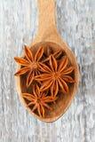Estrellas del anís en una cuchara de madera Fotos de archivo