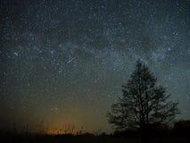 Estrellas del cielo nocturno y de la vía láctea, meteorito Cassiopea y pantano de la constelación del Cygnus foto de archivo