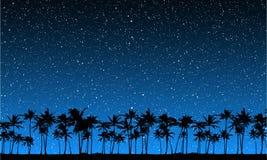 Estrellas detrás de las palmas stock de ilustración