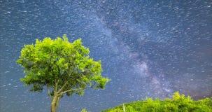 estrellas el caer del modo del cometa de la vía láctea del árbol de ciruelo 4k almacen de metraje de vídeo