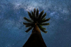 Estrellas ilimitadas Imagen de archivo libre de regalías