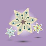Estrellas o copos de nieve Imagen de archivo libre de regalías