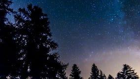 Estrellas y vía láctea de Timelapse en bosque de la montaña Italia almacen de metraje de vídeo