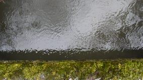 Estremità del fiume stock footage