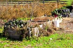 Estremità del giardino Fotografia Stock Libera da Diritti