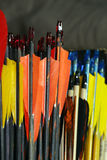 Estremità delle frecce di tiro con l'arco di sport nella fila Fotografie Stock