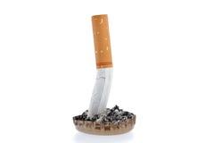 Estremità e cenere di sigaretta in una capsula Immagine Stock Libera da Diritti