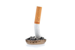 Estremità e cenere di sigaretta in una capsula Fotografia Stock