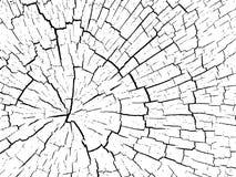 Estructura de grietas del fondo de madera Imágenes de archivo libres de regalías