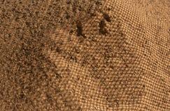 Estructura de la arena Fotografía de archivo