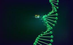 Estructura de la DNA libre illustration