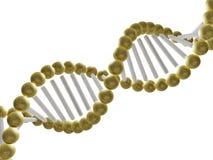 Estructura de la DNA Fotografía de archivo libre de regalías