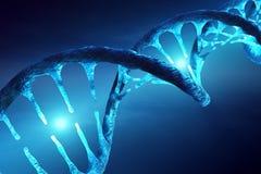 Estructura de la DNA iluminada Imágenes de archivo libres de regalías
