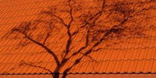Estructura de la teja en día soleado Fotos de archivo libres de regalías