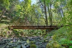 Estructura de madera del puente de registro sobre la cala de Gorton en Oregon Imagenes de archivo