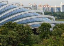 Estructura forestal de la nube de Singapur Foto de archivo