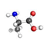 Estructura molecular de la alanina del aminoácido Imagen de archivo libre de regalías