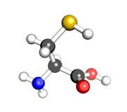 Estructura molecular de la cisteína del aminoácido Fotografía de archivo libre de regalías