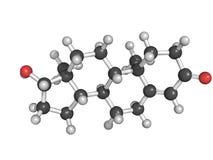 Estructura química de la testosterona Imágenes de archivo libres de regalías
