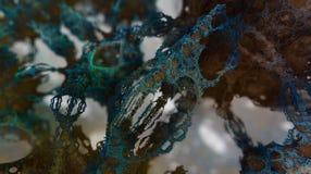 Estructuras arbóreas del fractal (fractal tridimensional diseñado por el software del fractal-generador) Foto de archivo libre de regalías