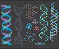 Estructuras de la DNA Imagen de archivo libre de regalías