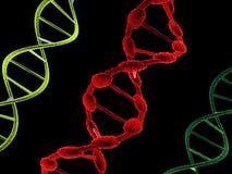 Estructuras de la DNA Fotos de archivo libres de regalías