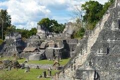 Estructuras del norte de la acrópolis en la plaza magnífica del nacional de Tikal Imágenes de archivo libres de regalías