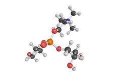 a estrutura 3d da alfa-GCP, um composto natural do choline encontrou em t Fotografia de Stock Royalty Free
