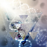 Estrutura da molécula do ADN na luz - fundo azul Fundo do vetor da ciência Fotos de Stock Royalty Free