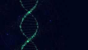 Estrutura da molécula do ADN, relação futurista da ficção científica, vetor ilustração royalty free