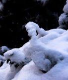 A estrutura da neve Imagens de Stock