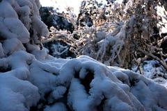 A estrutura da neve Fotos de Stock