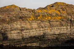 Estrutura da rocha Imagens de Stock Royalty Free