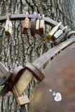 Estrutura da árvore do amor forte ano novo feliz 2007 Foto de Stock