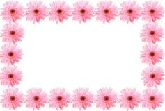 Estrutura das flores imagem de stock royalty free