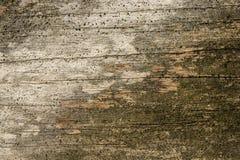 Estrutura de madeira Imagens de Stock Royalty Free