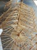 estrutura de papel do guarda-chuva fotos de stock