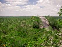 Estrutura de pedra maia antiga que aumenta fora do dossel da selva em foto de stock royalty free
