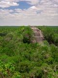 Estrutura de pedra maia antiga que aumenta fora do dossel da selva em Calakmul, México fotos de stock