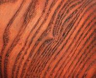 Estrutura de um corte de uma árvore Fotografia de Stock Royalty Free
