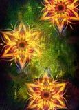 Estrutura decorativa floral com a mandala do teste padrão do filigrane no fundo abstrato Imagens de Stock Royalty Free