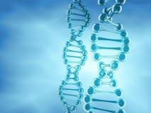 Estrutura do ADN Imagens de Stock Royalty Free